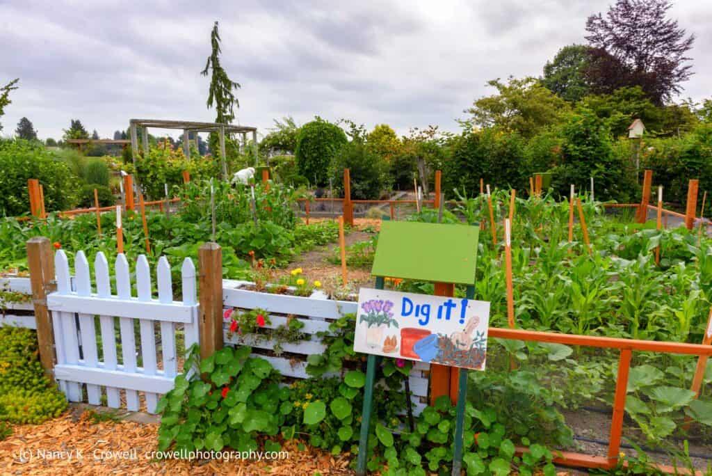 Dig It Garden